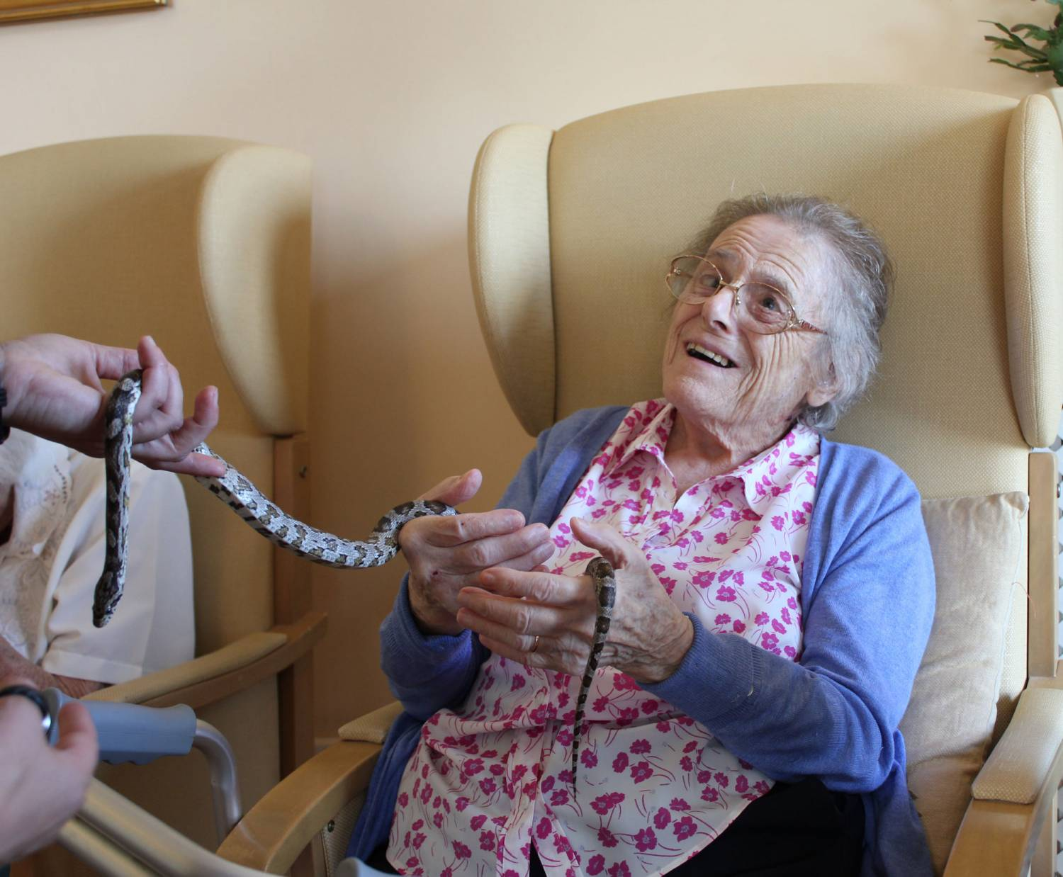 Fearless residents when Zoolab came to Bradfield Residential Home, Walmer, Deal Kent.