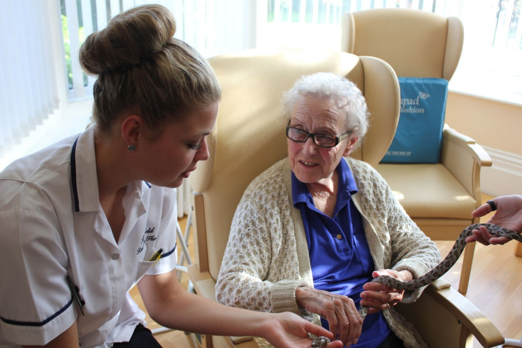 Zoolab experience at Bradfield Residential Home, Walmer Kent.